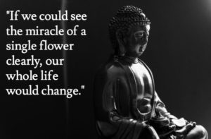 Buddha Flower Quote