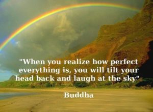 Buddha Nature Quotes
