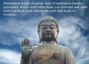 Meditation Buddha Quotes