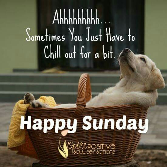 Image result for happy sunday quotes