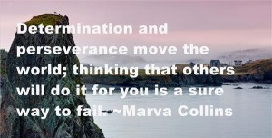quotes on persistence and determination images