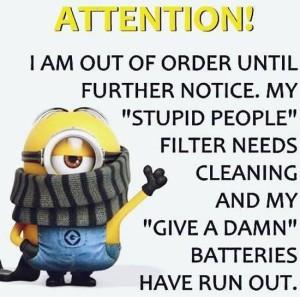 best-minion-pictures-quotes-lol