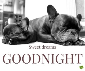 -good-night-quote-images-dog-sweet dreams