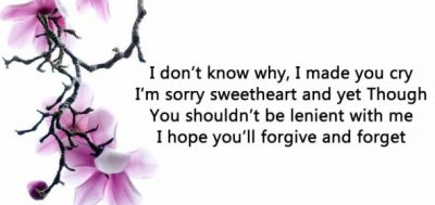 Best I'm Sorry Quotes