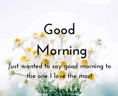 Good Morning My Love Quotes