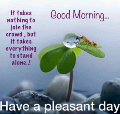 Gud Morning Quotes