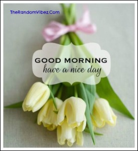 Nice Good Morning Card Images HD
