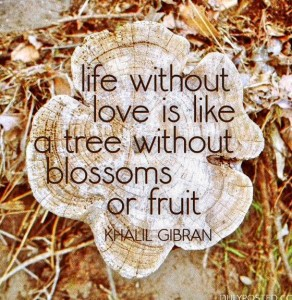 Khalil Gibran Quotes on Life IMages