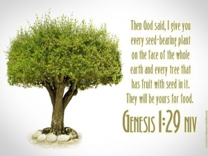 Marijuana Quotes in the Bible images