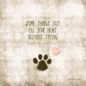 A Dog's Love Quotes with Pictures HD