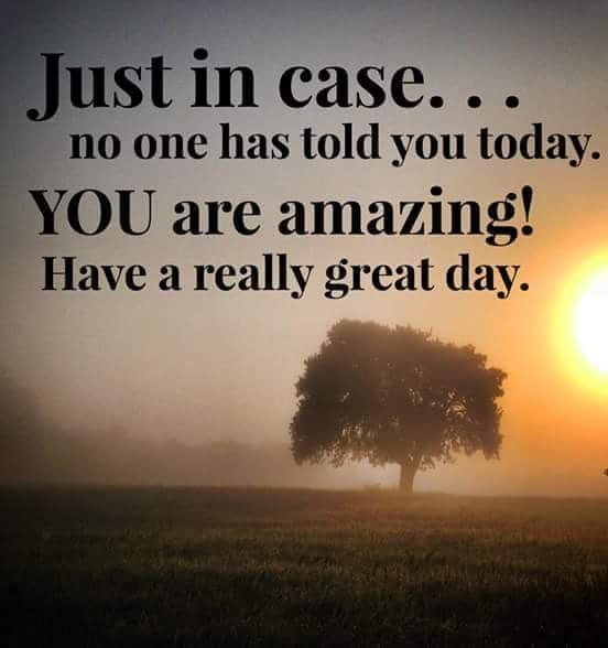 Positive Quote Day: Have A Great Day Quotes, Images, Texts