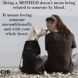 Dog Mom Quotes Instagram IMages
