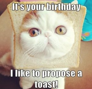 Funny Birthday Wishes Images
