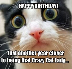 80+Top Funny Happy Birthday Memes