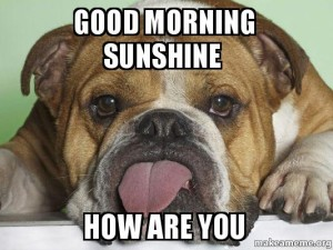 Good Morning Sunshine Meme Pictures