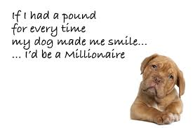 Heart Touching Quotes about Dog Love Images HD