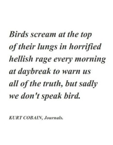 Kurt Cobain Journals Quotes Pics