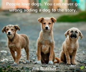 Nice Quotes about Dogs and People