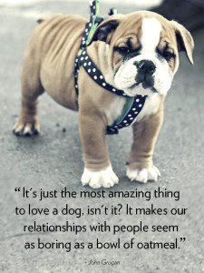 Quotes about Dogs Heart Love Images