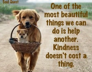 Quotes about Dogs Kindness Images