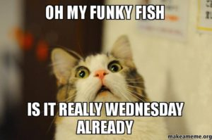 Wednesday Meme Pictures