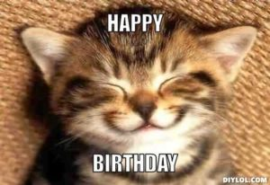 Image result for happy birthday cat meme