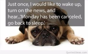 Funny Monday Motivational Quotes