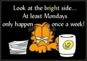 Garfield the cat I hate mondays