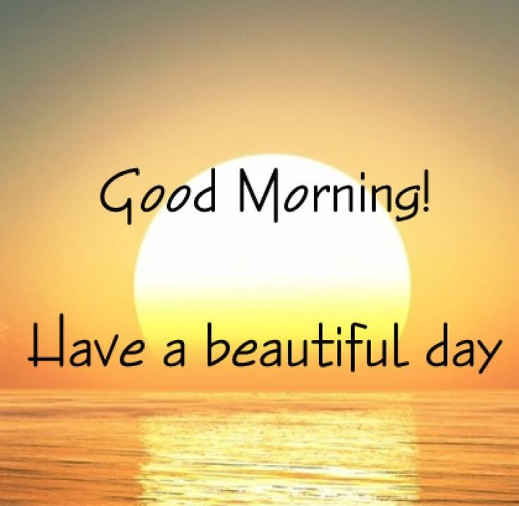 Good Morning Quotes Unique : Good morning have a great day quotes the random vibez