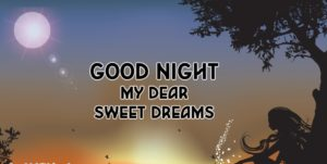 Good Night My Dear Quotes