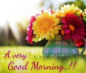 A very good morning wishes