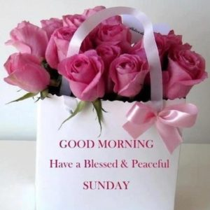 Blessed Sunday Quotes Images