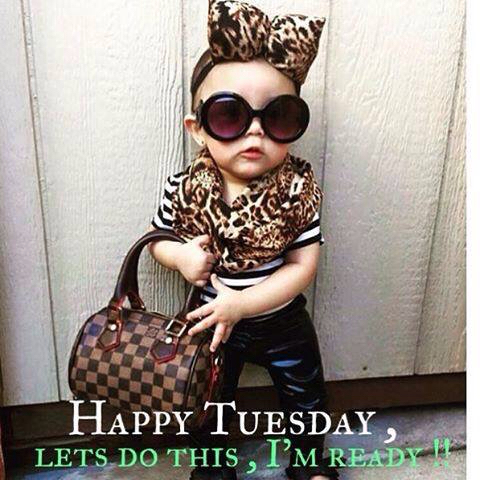 Cute Tuesday Morning Funny Images | The Random Vibez