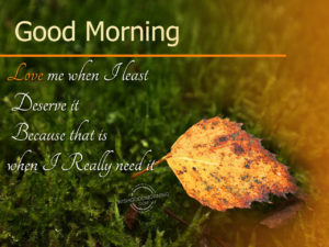 Good Morning Wishes Best