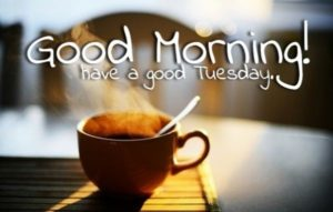 Good Morning Wishes Tuesday