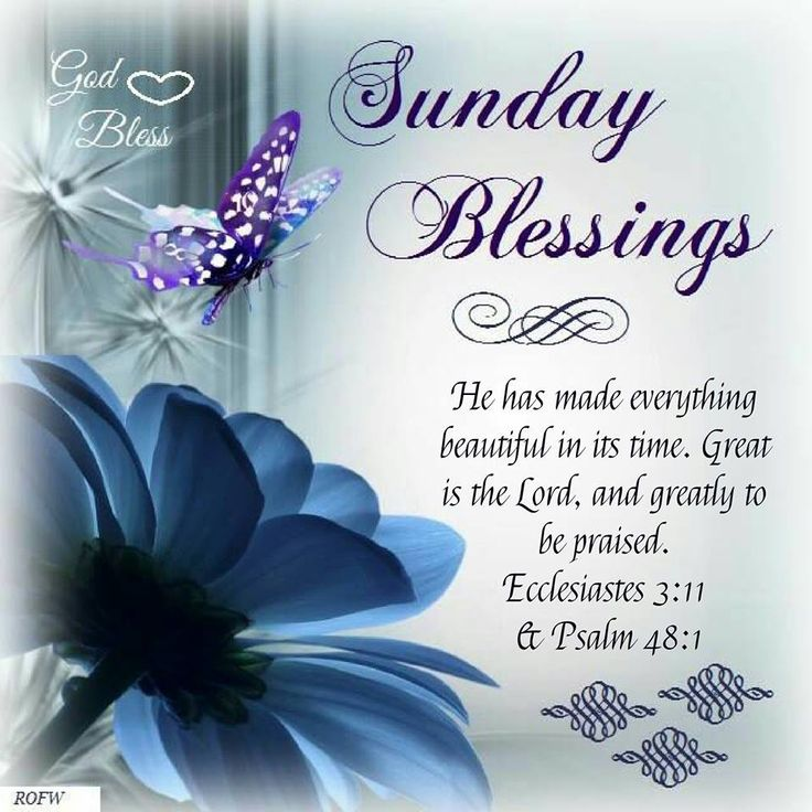 Sunday Blessings Quotes New Collection Of Best Blessed Sunday Quotes