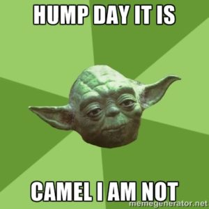 Hump Day Meme Images