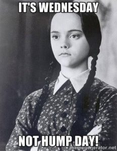 Wednesday addams hump day meme