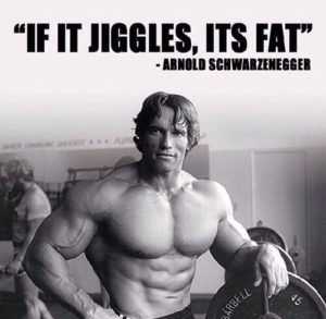 Arnold Schwarzenegger Workout Quotes Arnold Schwarzenegger Bodybuilding  Quotes