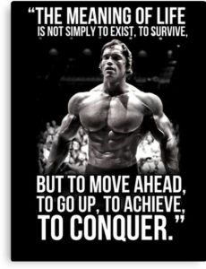 Best Arnold Schwarzenegger Quotes