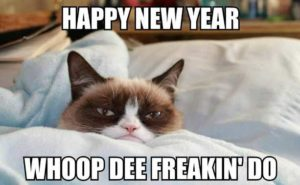 Happy New Year Cat Meme 2018