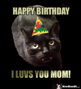 Happy Birthday Mom Cat Meme
