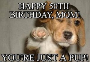 Happy Birthday Mom Memes Dog