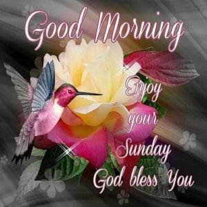 Good morning Sunday Quotes Wishes