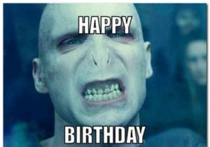 Harry Potter Birthday Memes