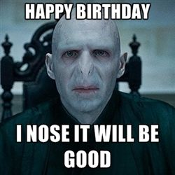 Harry Potter Happy Birthday Meme