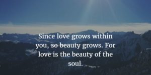 Love and Soul Quotes