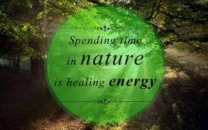 Best Quotes about nature and Life