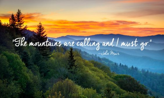 55+ Most Beautiful Quotes about Nature and Life