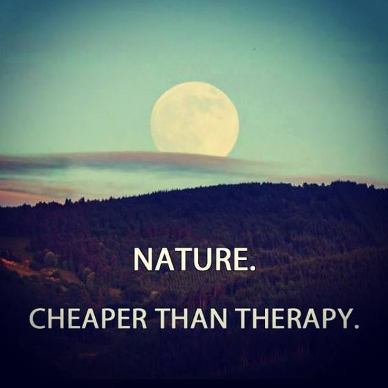most beautiful quotes about nature and life